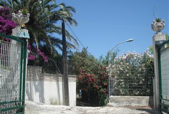 Foto ALTRO 17 Puglia FG Vico del Gargano