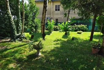 Il giardino è con erba Veneto RO Loreo