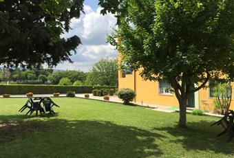 Il giardino è con erba Marche MC Appignano