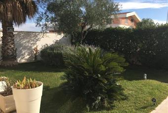 Foto ALTRO 6 Puglia BA Palo del Colle