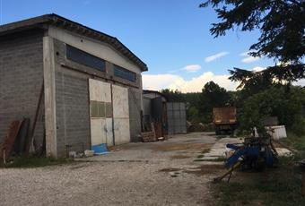 Foto ALTRO 5 Emilia-Romagna FE Argenta