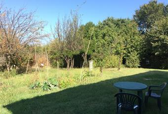 Il giardino è con erba Marche AN Senigallia
