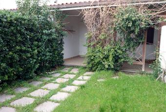 Il giardino è con erba Lazio VT Tarquinia