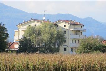 Foto ALTRO 3 Piemonte NO Borgomanero