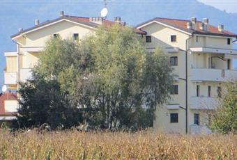 Foto ALTRO 4 Piemonte NO Borgomanero