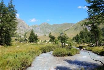 Foto ALTRO 10 Valle d'Aosta AO Courmayeur