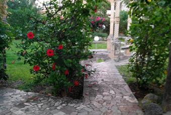 Il giardino è con erba Calabria CZ Nocera Terinese