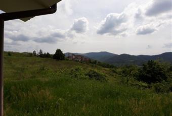 Foto ALTRO 8 Piemonte AL Lerma