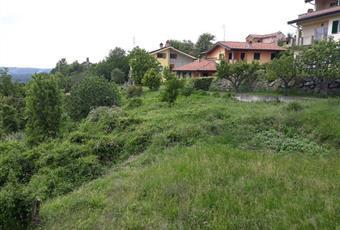 Foto ALTRO 7 Piemonte AL Lerma