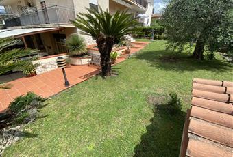 Il giardino è con erba con sistema di irrigazione, piscina coperta da piante tropicali, altalena, gazebo con sedie e tavolo, gazebo con tettoia ad entrata dall'esterno.  Lazio LT Norma