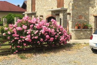 Foto ALTRO 4 Piemonte AT Montabone