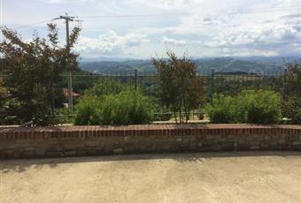 Foto ALTRO 18 Piemonte AT Montabone