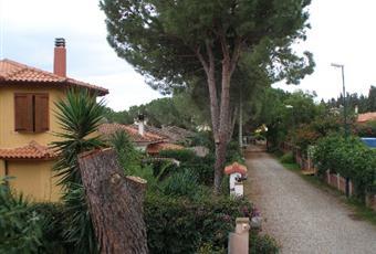 La casa è situata in zona tranquilla e silenziosa, a breve distanza dal mare e dalla montagna. Nella foto l'ingresso pedonale e carrabile, la strada interna costeggiata da pini.  Sardegna CA Capoterra