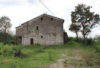 Il giardino esterno e terreno per totali mq 3.150 circa Umbria PG Città di Castello