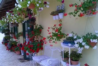 La cucina è luminosa, il salone è luminoso Abruzzo PE Loreto Aprutino