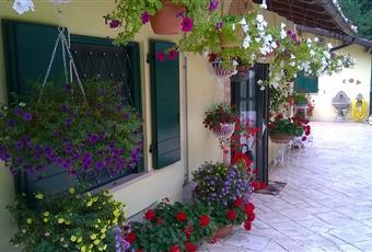 Foto ALTRO 7 Abruzzo PE Loreto Aprutino