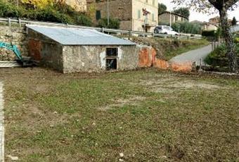 Foto GIARDINO 4 Toscana SI Sovicille
