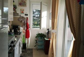 La cucina è luminosa, il pavimento è piastrellato Emilia-Romagna RN Rimini