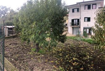 Foto ALTRO 29 Campania AV Pietradefusi
