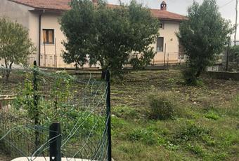 Foto ALTRO 26 Campania AV Pietradefusi