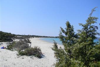 Foto ALTRO 7 Sardegna CI Calasetta