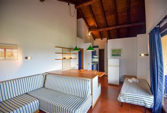 Il pavimento è piastrellato in cotto, il salone è con travi a vista, il salone è luminoso, la camera è luminosa Sardegna OT Olbia