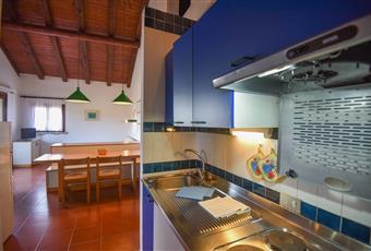 Il pavimento è piastrellato, la cucina è con travi a vista, la cucina è luminosa Sardegna OT Olbia