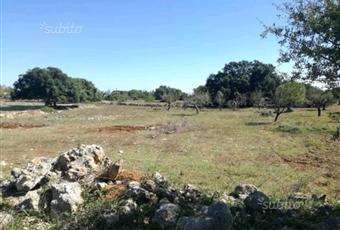 Foto GIARDINO 2 Puglia BR San Vito dei Normanni