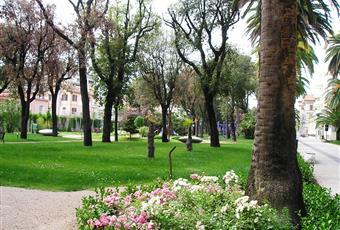 Il giardino è con erba Marche AP San Benedetto del Tronto