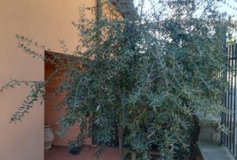 Foto ALTRO 10 Toscana PO Poggio a Caiano