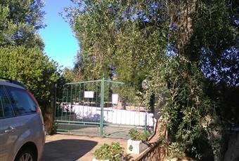 Foto GIARDINO 16 Puglia BR Carovigno