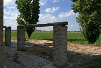 Foto GIARDINO 4 Emilia-Romagna RA Ravenna