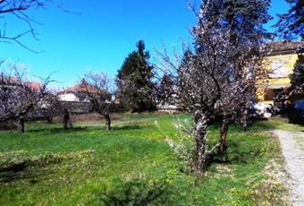 Foto GIARDINO 2 Piemonte AL Castellar Guidobono