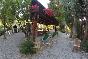 Foto GIARDINO 3 Calabria VV Parghelia