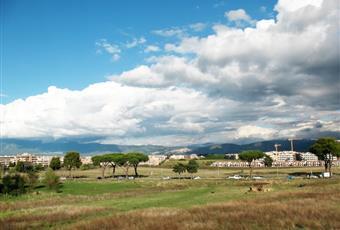 Foto ALTRO 14 Lazio RM Roma