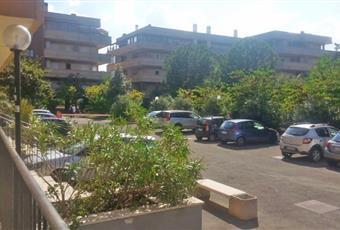 Foto ALTRO 16 Lazio RM Roma