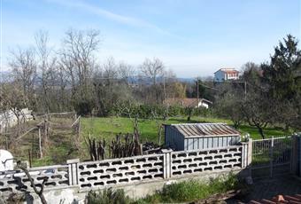 Foto ALTRO 3 Piemonte AL Murisengo
