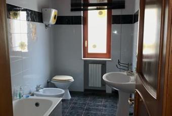 Appartamento o camere in affitto