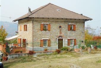 Foto ALTRO 8 Piemonte AL Visone