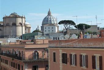 Il pavimento è di parquet, il salone è luminoso, la camera è luminosa Lazio RM Roma