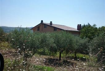 Foto ALTRO 8 Campania AV Montecalvo Irpino