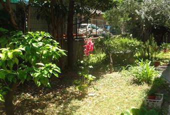 Il giardino è con erba Abruzzo PE Montesilvano