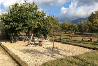 Il pavimento è di parquet, il pavimento è piastrellato, il salone è con camino, il salone è luminoso, il giardino è con erba, travi a vista Lazio RM Palombara Sabina