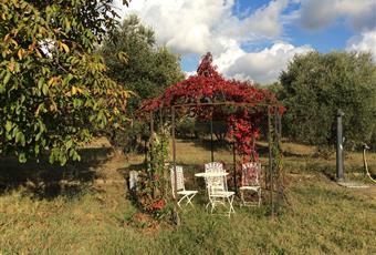Il giardino è con erba Lazio RM Palombara Sabina