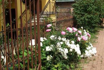 Foto GIARDINO 15 Piemonte AL Borghetto di Borbera