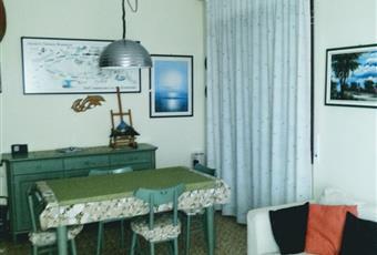 Stanza luminosa con finestra e porta per l'accesso al balcone Liguria IM San Lorenzo al mare