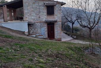 Foto ALTRO 15 Marche MC Caldarola