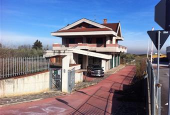 Foto ALTRO 13 Abruzzo PE Cepagatti