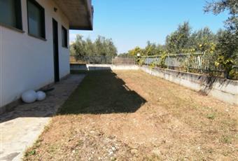 Foto ALTRO 24 Abruzzo PE Cepagatti