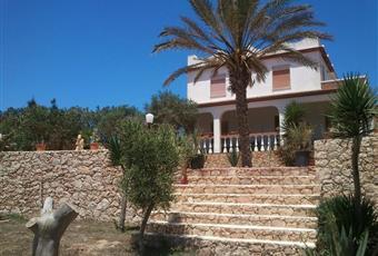 Foto ALTRO 7 Sicilia AG Lampedusa e Linosa